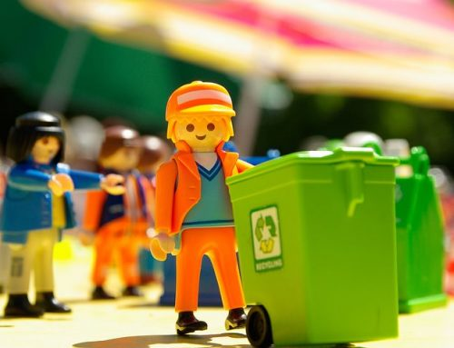 Why Homeowners Should Connect With Sydney Waste Services